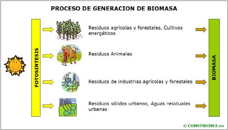 external image Energia_Biomasa.jpg